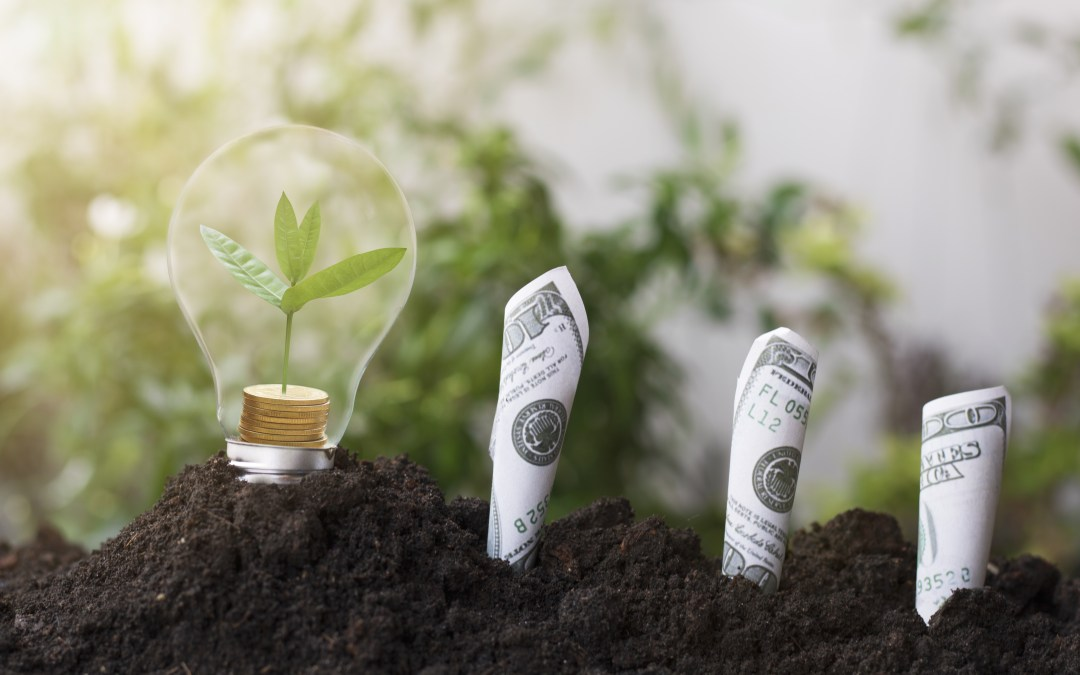 ESG Investing – Myths and Realities
